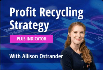 class_ProfitRecyclingStrategy