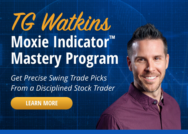Online Ad-2nd Ad-TG-Moxie-Indicator-Mastery-2021-Simpler-Insights