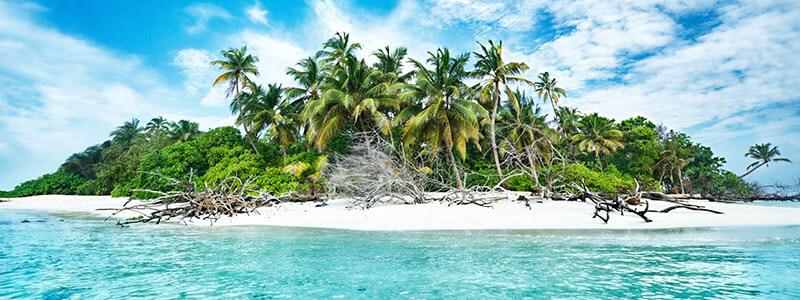 island-header